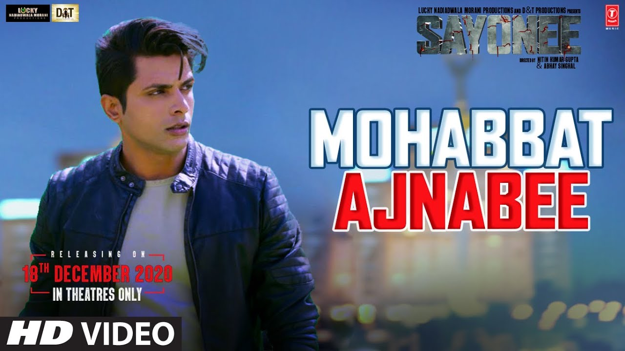 Mohabbat Ajnabee Lyrics in Hindi